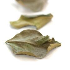Kaffir Lime Leaves - 4 oz.