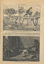1879 NYC Central Park History Deterioration New York City Harper's Weekly