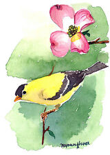 ACEO Limited Edition-Spring sonata, Goldfinch art, Miniature watercolor painting