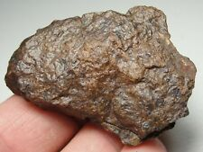 New listing Meteorite - Whole Stone - Top Quality - B9-5579 - 41.73g - Great Specimen