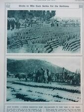 1916 SERBIAN AMMUNITION DUMP NEAR SALONIKA WWI WW1