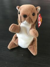 """Ty Beanie Babies """"Nuts"""" Squirrel 1996 Retired"""