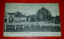 THE OLD CHERRY TREE INN, SOUTHGATE, MIDDLESEX - Early 1900's (A).