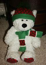 """ST. JUDE CHILDREN'S HOSPITAL 19"""" HUGFUN Winter PLUSH Teddy BEAR RUDY    E1"""
