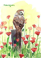 ACEO Limited Edition- Owl in a poppy field, Art print, Gift for bird lovers
