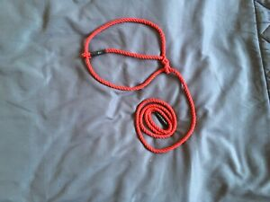 6mm red cotton sheep/calf halter's(show)farmuse 6FT X 5