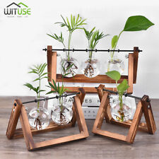 3PCS FLOWER POT DESKTOP GLASS VASE MINI BULB PLANTER+WOODEN STAND FOR HOME DECOR