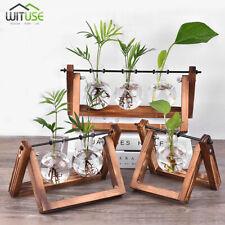 3PCS FLOWER POT DESKTOP GLASS VASE MINI BULB PLANTER+WOODEN STAND FOR HOME DECOR