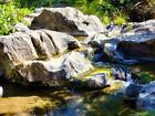 JESUS AND MARIA GOLD, 2 GOLD MINING CLAIMS, CALAVERAS COUNTY, CA