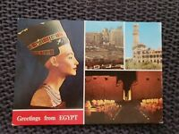 Greetings From Egypt - Vintage Postcard