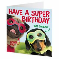 Birthday greetings from 'Bat Sausage' and 'Spider Pug' – fun dog Birthday card