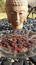 100 YOPO Seeds Anadenanthera Peregrina - Organic