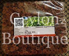 High Quality Pure Ceylon Cinnamon Sticks from Sri Lanka