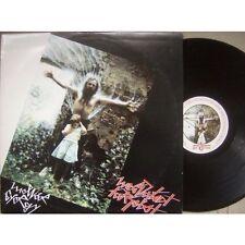 Rock & Underground Vinyl-Schallplatten aus Osteuropa (kein Sampler) mit 33 U/min
