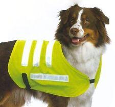 Manteau en polyester pour chien