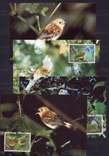 s3713) COOK ISL. 1989 MNH** WWF, Birds 4v MAXICARDS