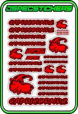 CAPRICORN RC STICKER A5 LAB 1/8 F1 1/10 TESLA ELECTRIC NITRO CAR HARD RED BLACK