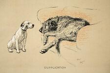 Cecil Aldin DOG Print Cracker Bull Terrier Micky Levriero irlandese Caccia Fattoria 3
