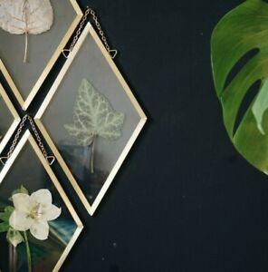 Hanging wall decor, Herbarium Frame, Pressed Flowers, Botanical Art, Floral art