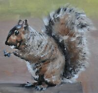 Lovely James Coates Original Oil Painting Of A Squirrel (British Wildlife Art)