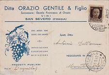 # S. SEVERO: testatina - VINI ditta ORAZIO GENTILE & FIGLIO