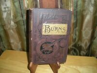 The Poetical Works Of Robert Burns Published 1886
