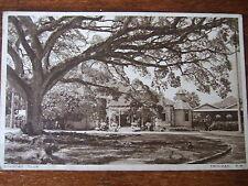 TRINIDAD  West Indies, Country Club , Photochrom Old Postcard,