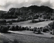 Edward WESTON: Eel River, 1937 / Silver / Printed 1951 / SIGNED by the Artist!