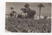 Las Palmas de Gran Canaria Vista Parcial Spain RP Postcard 445a