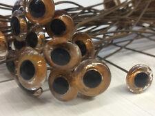 """Vintage antique glass eyes for decoys bear taxidermy dolls felting: 1/2"""" (12mm)"""