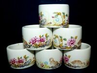 Napkin Rings Set of 6 Porcelain White Floral England ? Baby Chicks Farmhouse