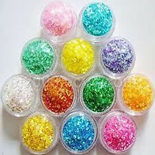 12 Mix Color Nail Art Acrylic Glitter Powder Dust Tips Decoration Tool Fine Set