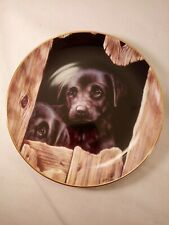 Playful Puppies The Hideout Plate Black Lab Labrador Retriever Dog Puppy