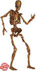 Jointed Skeleton Halloween Party Haunted House Decoration Props 6 ft Life Size