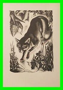 Vintage Art Deco Black And White Etching Print 'Fox' By Agnes Miller Parker 1937