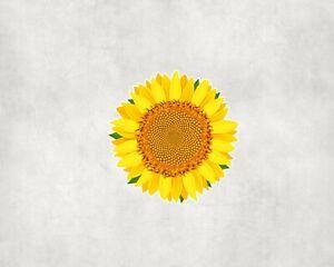 2 x Sunflower Sunshine Flower Sticker Car Bike Laptop Indoor Decals