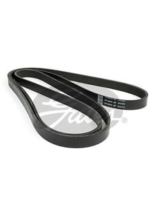 Gates Micro-V Ribbed Belt FOR SSANGYONG CHAIRMAN HT_ (6PK2415)