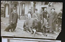 VERY RARE 1 OF A KIND POSTCARD ARCHDUKE FERNINAND MOOSE HUNTING CANADA 1914