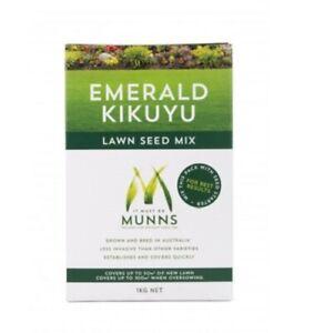 Munns Lawn Seed Emerald Kikuyu Mix 1kg New Grass Dark Green