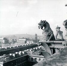PARIS c. 1950 - Notre Dame Gargouilles Chimères - DIV 9480