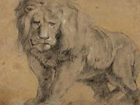 SIR PETER PAUL RUBENS FLEMISH LION OLD ART PAINTING POSTER PRINT BB6375A