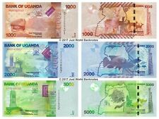 Uganda 1000 + 2000 + 5000 Shillings Set of 3 Banknotes 3 PCS UNC