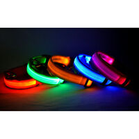 Safety Pet Dog/Cat Collar Led Light Up Flashing Glow In The Dark