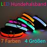 Hundehalsband LED Leuchthalsband für Hunde 7 Farben 4 Größen S-M-L-XL ✅Neu✅