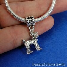 Silver JACK RUSSELL TERRIER Dog Dangle Bead CHARM fits EUROPEAN Bracelet *NEW*