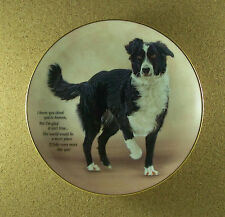 Cherished Border Collies Nicer Place Plate Collie Puppy Dog Charming! Htf