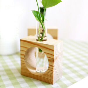 Plant Hydroponic Bonsai Crystal Glass Test Tube Vase in Wooden Stand Flower Pots
