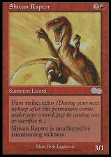 MTG SHIVAN RAPTOR - RAPTOR DI SHIV - US - MAGIC