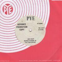 Robb Storme & Whispers Shy Guy Pye Demo 7N 15819 Soul Northern Motown