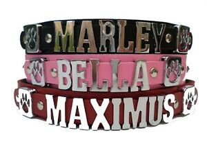 french bulldog large personalised leather dog collar  any name or colour